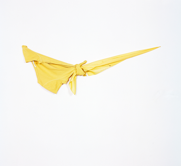 OBJECT / A | Artists | Jo McGonigal: Yellow Yellow (2015)