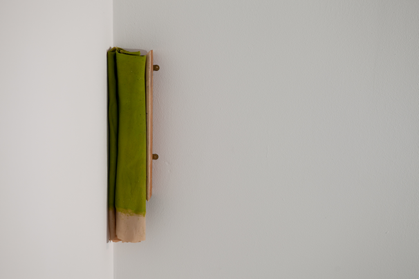 OBJECT / A | Artists | Jo McGonigal: Close Looking (2015)